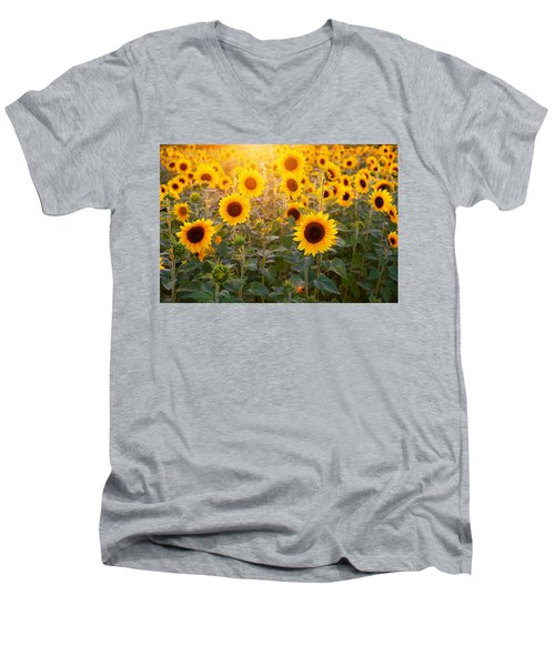 Sunflowers Field Men's V-Neck T-Shirt