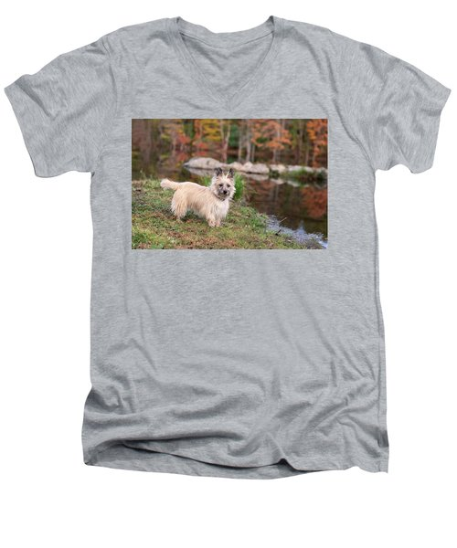 Tasha 7 Better Colors Men's V-Neck T-Shirt