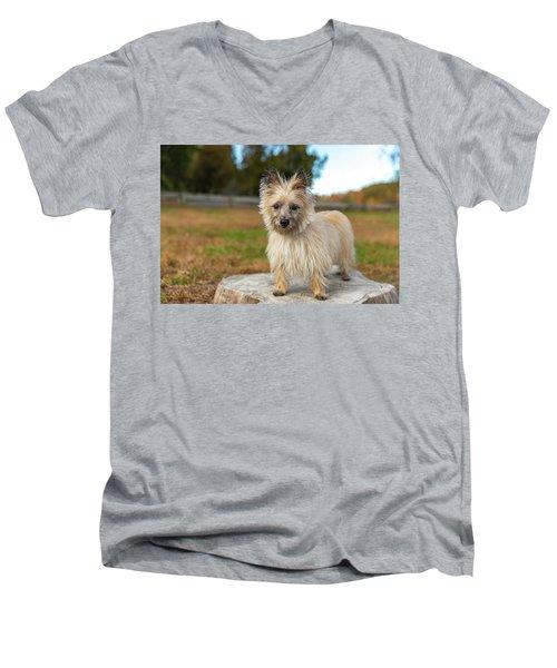 Tasha Men's V-Neck T-Shirt