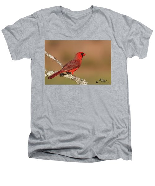 Texas Cardinal Men's V-Neck T-Shirt