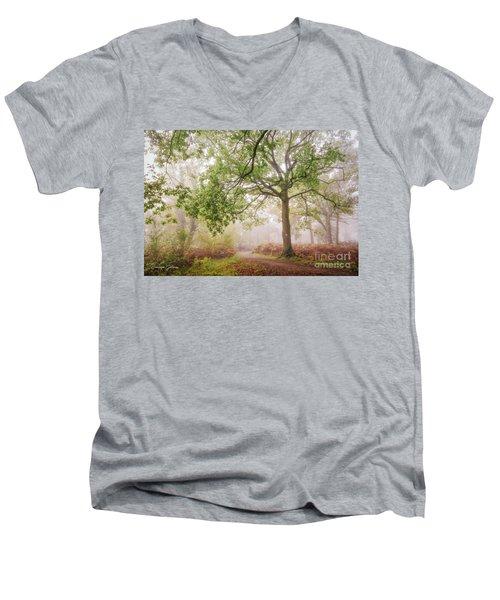 The Autumn Path Men's V-Neck T-Shirt