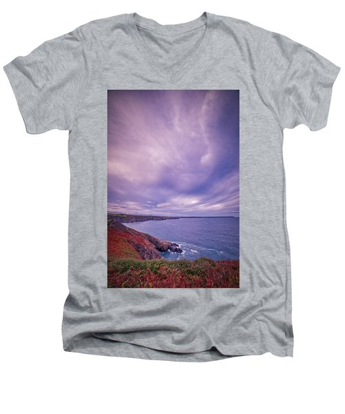 The Lizard Point Men's V-Neck T-Shirt