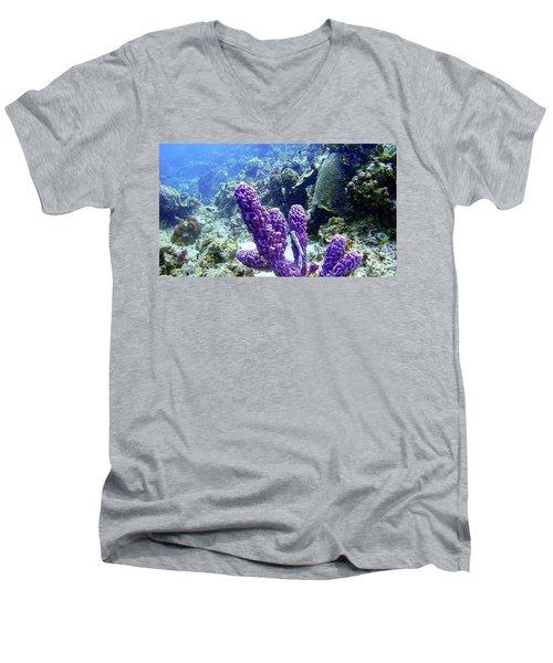 The Purple Sponge Men's V-Neck T-Shirt