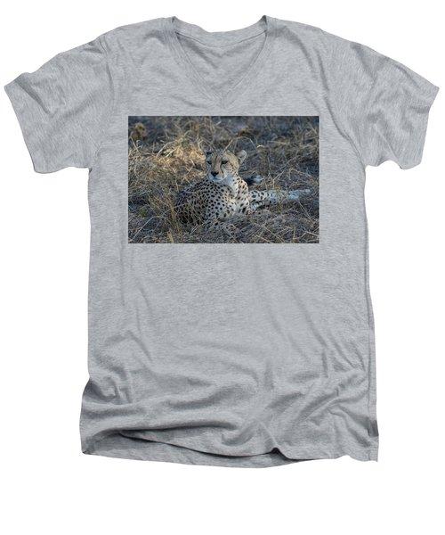 Cheetah In Repose Men's V-Neck T-Shirt