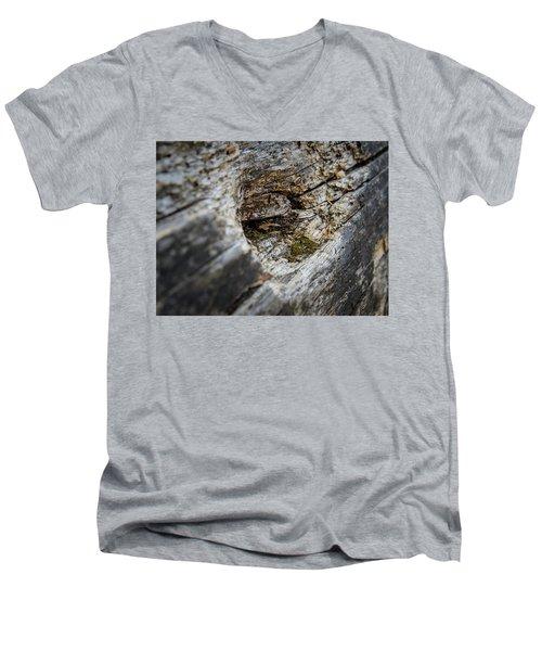 Tree Wood Men's V-Neck T-Shirt