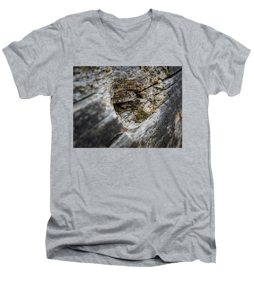 Tree Wood Men's V-Neck T-Shirt
