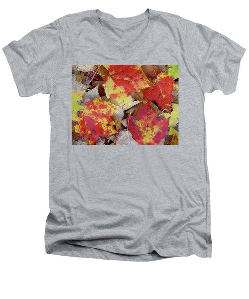 True Autumn Colors Men's V-Neck T-Shirt