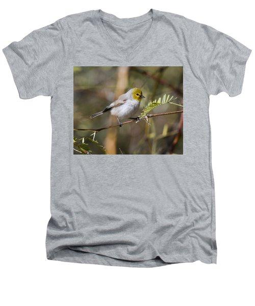 Verdin Men's V-Neck T-Shirt