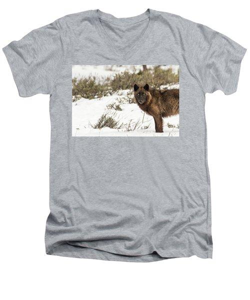 W12 Men's V-Neck T-Shirt