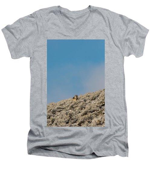 W24 Men's V-Neck T-Shirt