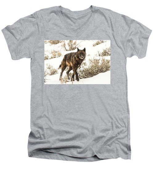 W38 Men's V-Neck T-Shirt