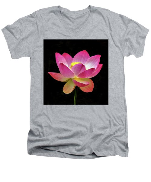 Water Lily In The Light Men's V-Neck T-Shirt
