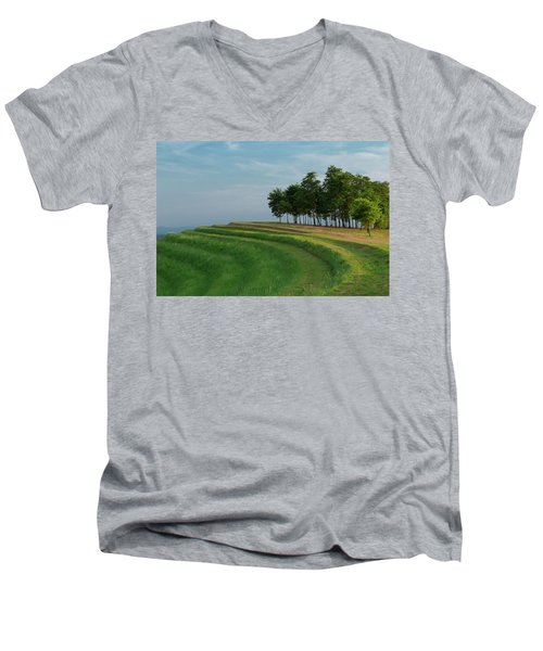 Waves Of Grass Men's V-Neck T-Shirt