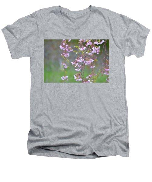 Weeping Cherry Blossoms Men's V-Neck T-Shirt