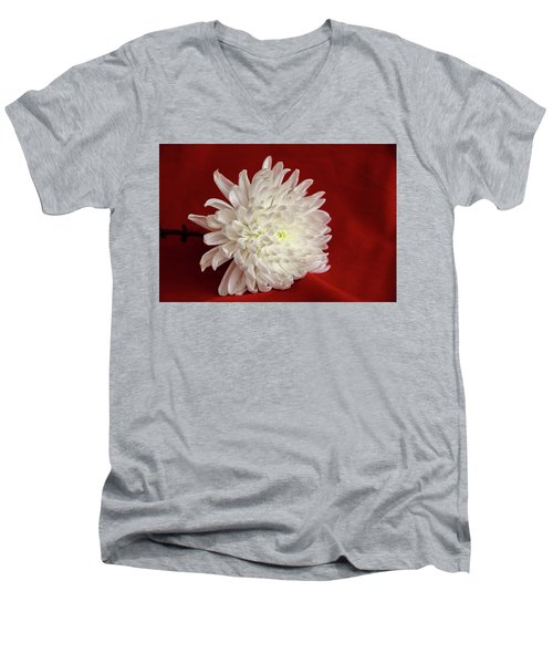 White Flower On Red-1 Men's V-Neck T-Shirt