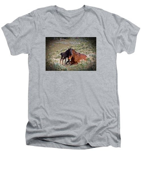 Wild Black New Born Foal And Mare Men's V-Neck T-Shirt