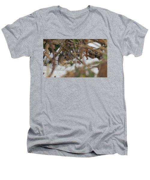 Wood Mouse Men's V-Neck T-Shirt