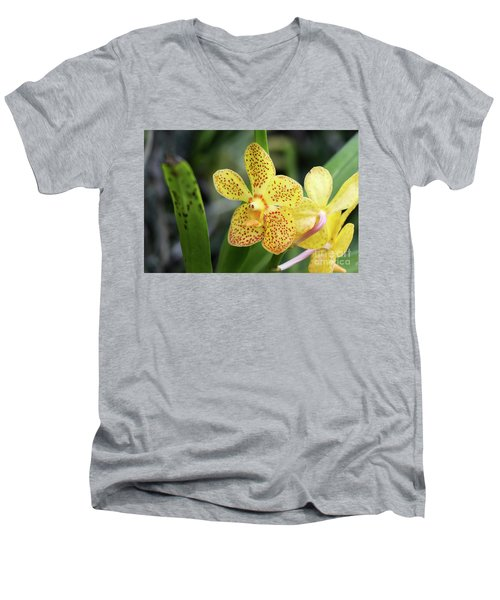 Yellow Spotted Orchids Men's V-Neck T-Shirt