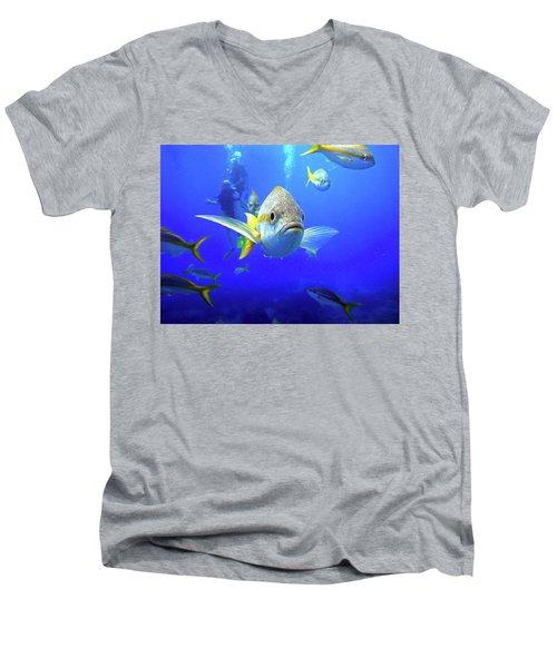 Yellowtails Men's V-Neck T-Shirt