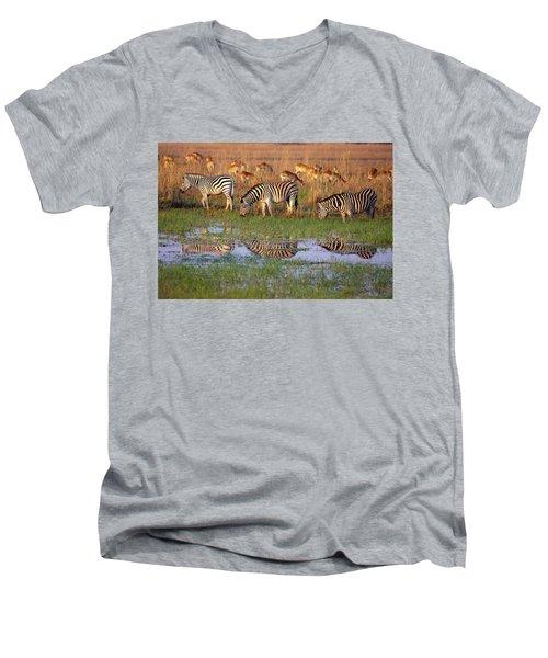 Zebras In Botswana Men's V-Neck T-Shirt