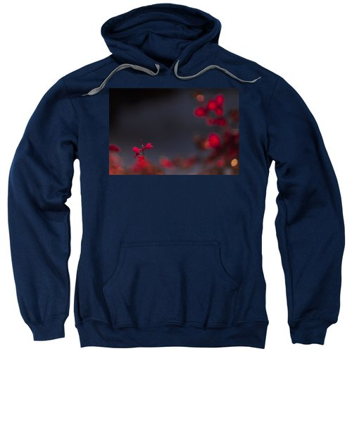 Backlight Sweatshirt
