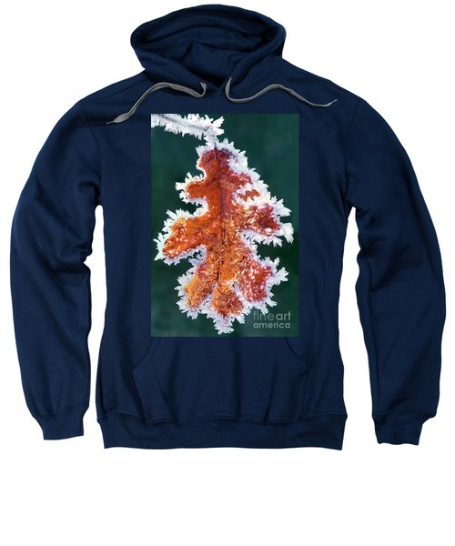 Black Oak Leaf Rime Ice Yosemite National Park California Sweatshirt