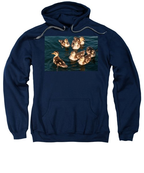 Brothers And Sisters Sweatshirt