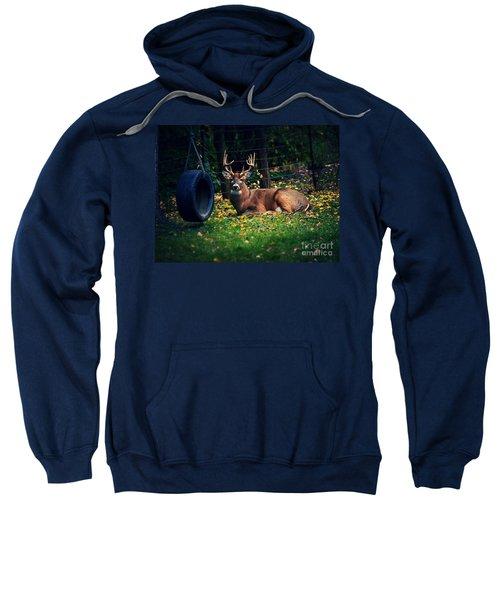 Buck In The Back Yard Sweatshirt
