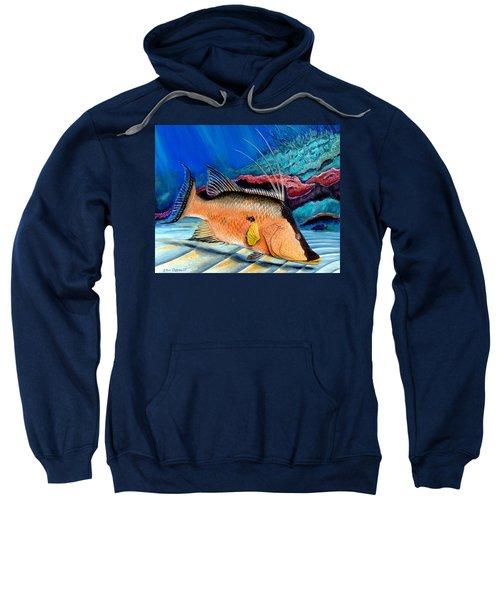 Bull Hogfish Sweatshirt