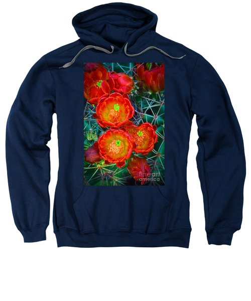 Claret Cup Sweatshirt
