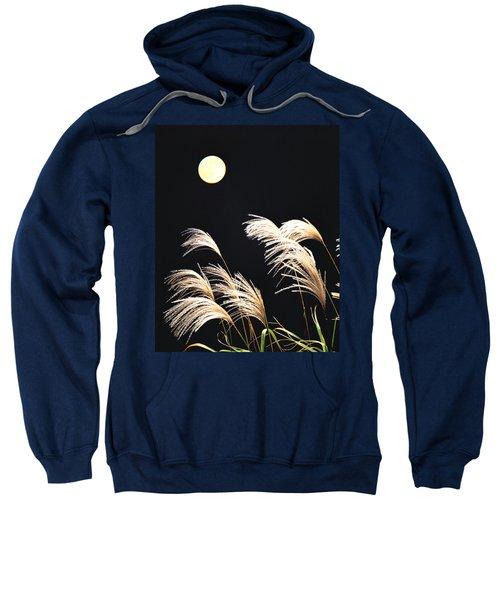 Close Up View Of Foxtail Grass Sweatshirt