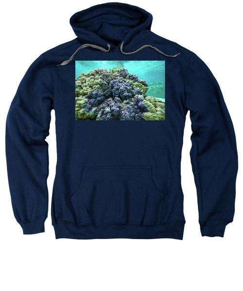 Coral Reef In The Pacific Ocean Sweatshirt