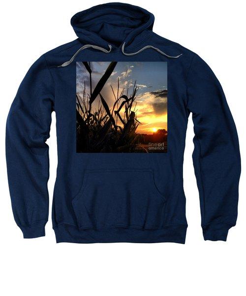 Cornfield Sundown Sweatshirt