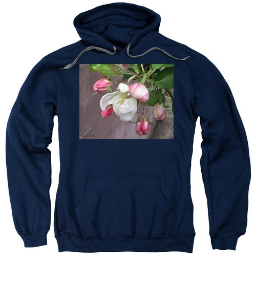 Sweatshirt featuring the digital art Crabapple Blossoms Miniature by Donald S Hall