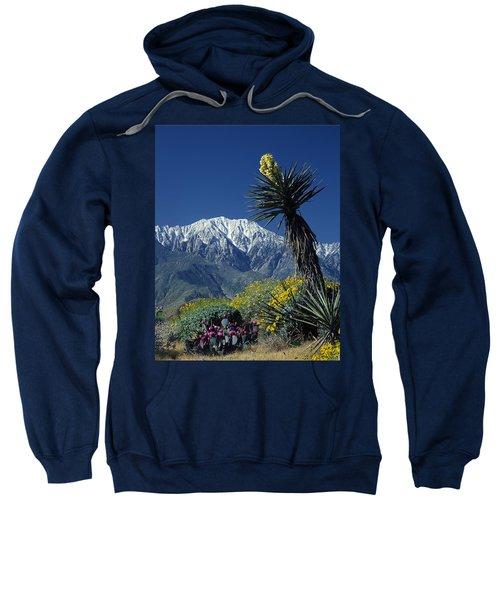 Desert Blooms Sweatshirt