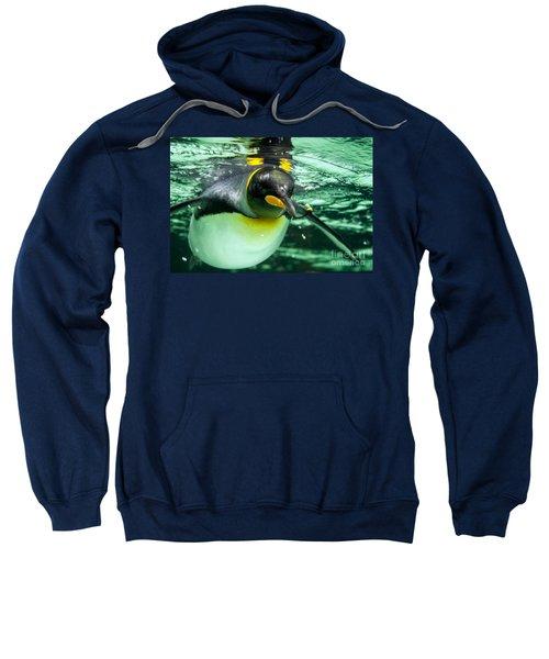 King Penguin Sweatshirt
