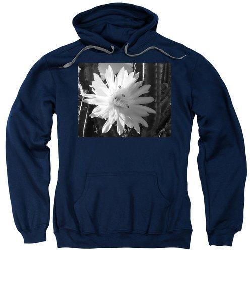 Flowering Cactus 5 Bw Sweatshirt