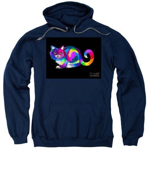 Fluffy Rainbow Calico Sweatshirt