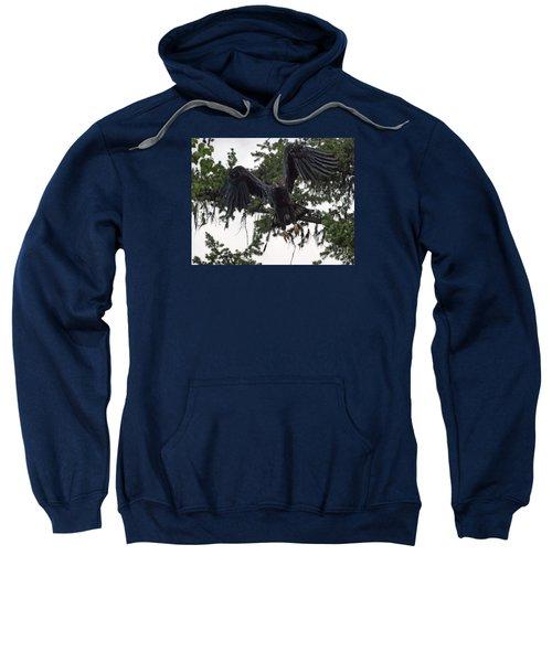 Focused On Prey Sweatshirt