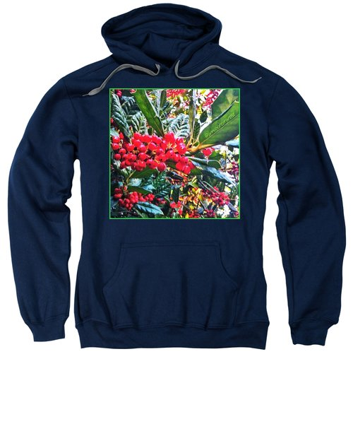 Holly Berries In The Sun Sweatshirt