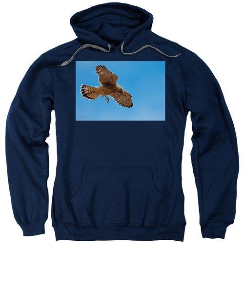 Hovering Sweatshirt