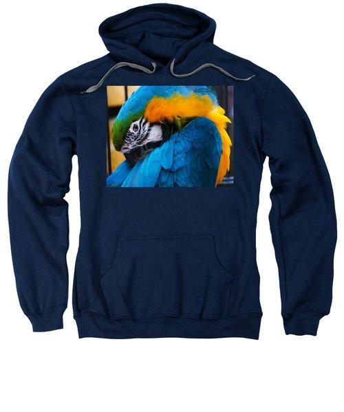 I Always Feel Like Somebody's Watching Me Sweatshirt