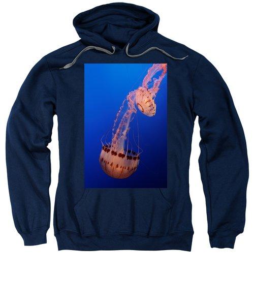 Jelly And Fishy Sweatshirt