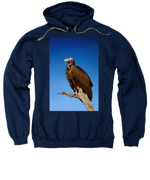 Lappetfaced Vulture Against Blue Sky Sweatshirt by Johan Swanepoel