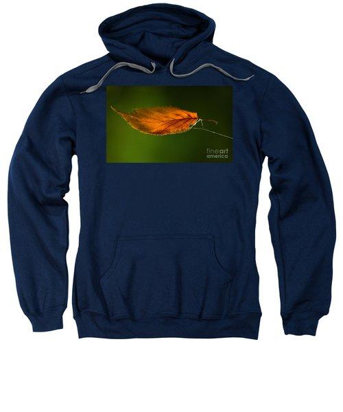 Leaf On Spiderwebstring Sweatshirt