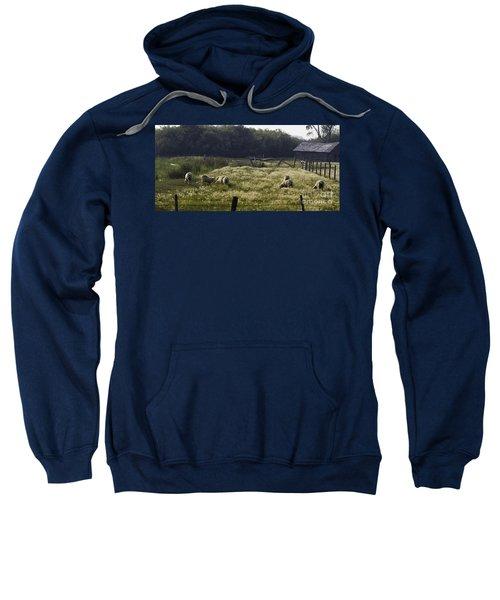 Montana Graze Sweatshirt