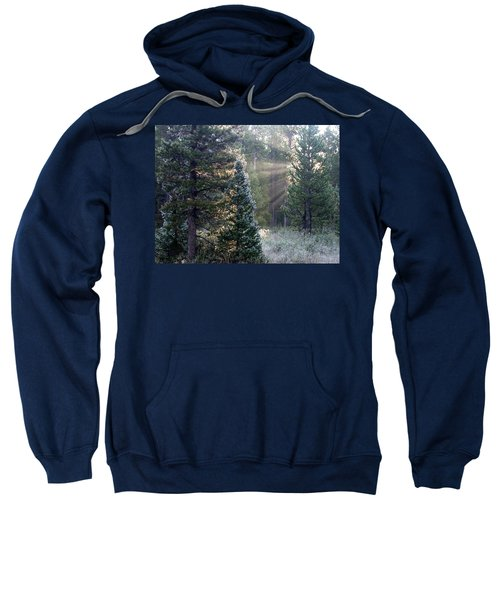 Morning Rays Sweatshirt