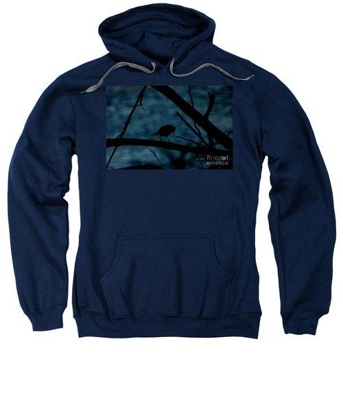 Night Bird Sweatshirt