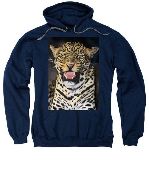 No Solicitors African Leopard Endangered Species Wildlife Rescue Sweatshirt