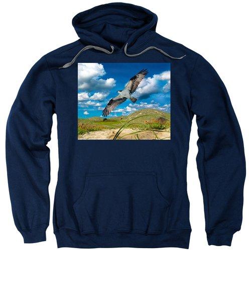 Osprey On Shackleford Banks Sweatshirt